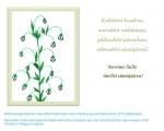 """Sünnipäeva e-kaart """"Piibeleht"""""""